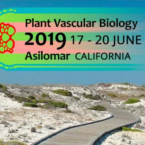 Apply Now for Travel Awards to attend the Plant Vascular Biology 2019 meeting in Asilomar (PVB2019.org)